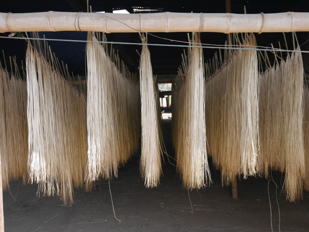 genuine_panamas_made_in_equador_from_natural_straw